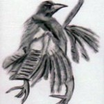 Crow Drawing 1
