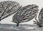 Trees & Roots VI (Blasted Trees 1)