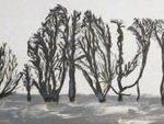 Trees & Roots VI (Blasted Trees 2)