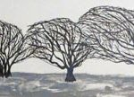 Trees & Roots VI (Blasted Trees 3)