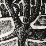 Dead Tree, Willingdon