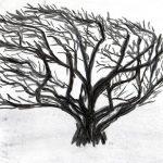 Trees & Roots VII (Blasted Trees D3)