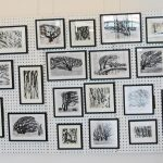 "Trees & Roots ""drawings wall"" at the HAF"